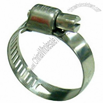 Pretty American-Type Hose Clamp