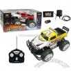 Remote Radio Control Car