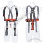 Safety Belt Carrying System