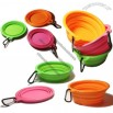 Silicone Collapsiable Travel Bowl Dish Portable Dog/Cat Bowl With Carabiner