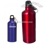 Silver aluminum sports bottle