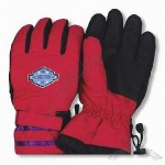 Ski Gloves with TR Lining
