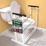 Toilet Safety Rail With One Magazine Basket