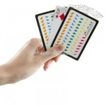 Transparent plastic poker sized poker playing cards