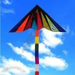 Triangle Kite