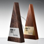 Triangle Wooden Trophy