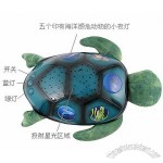 Turtle Projector