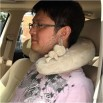 Ultra Soft Steam Velour U Shape Neck Pillow Car Neck Cushion