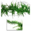 Whimsical Green Laser Tinsel Christmas Garland 9' x 12