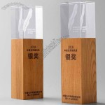 Wooden crystal trophy
